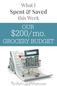 OUR $200/MO. GROCERY BUDGET: WHAT I SPENT & SAVED (11/13-11/19)