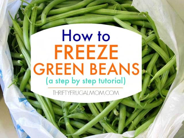How to Freeze Green Beans (a step by step tutorial)