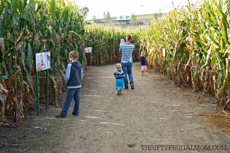cherry-crest-adventuer-corn-maze2
