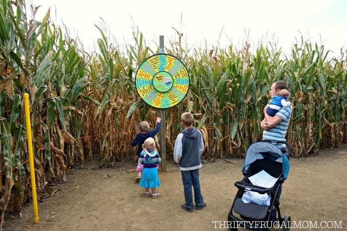cherry-crest-adventuer-corn-maze3