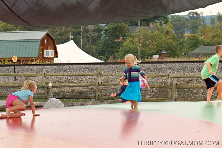Cherry Crest Adventuer Farm Barnyard Jump Kid