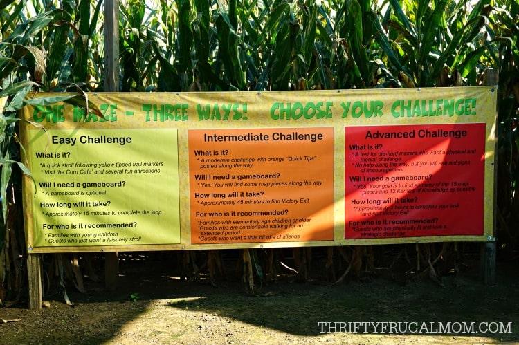cherry-crest-adventuer-farm-corn-maze-challenge