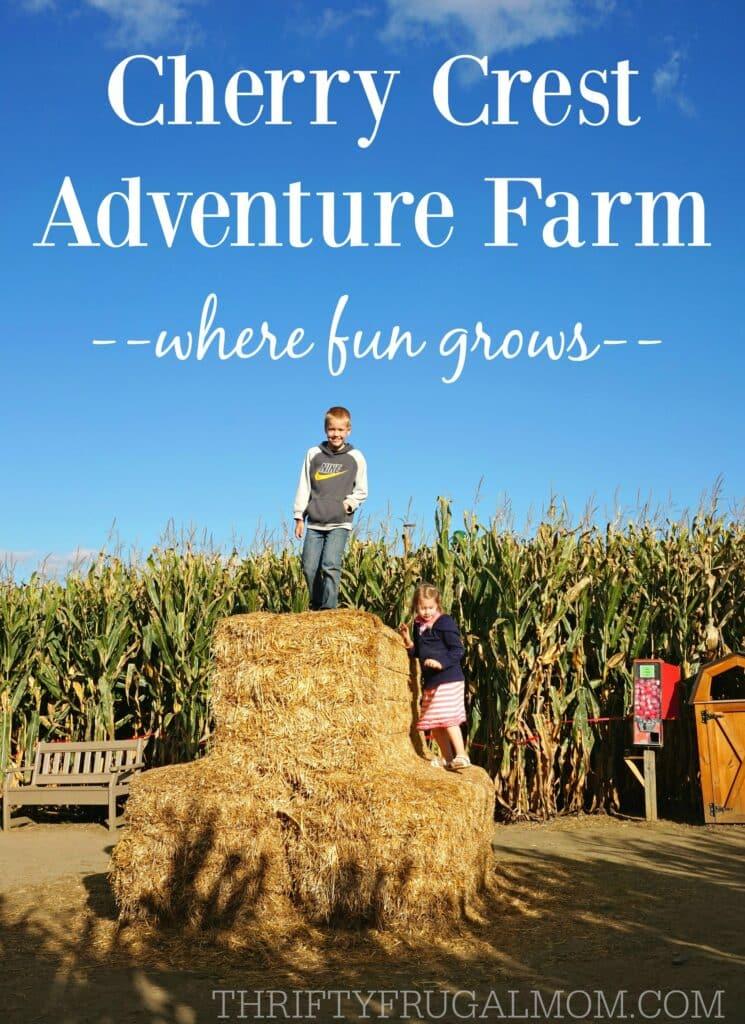 cherry-crest-adventure-farm-pennsylvania2