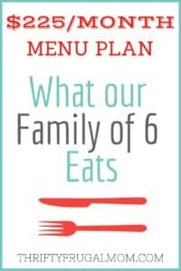 $225/MONTH MENU PLAN FOR OUR FAMILY OF 6 (POST #36)