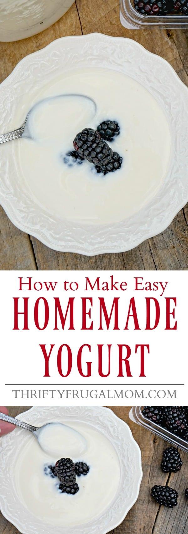 easy-homemade-yogurt