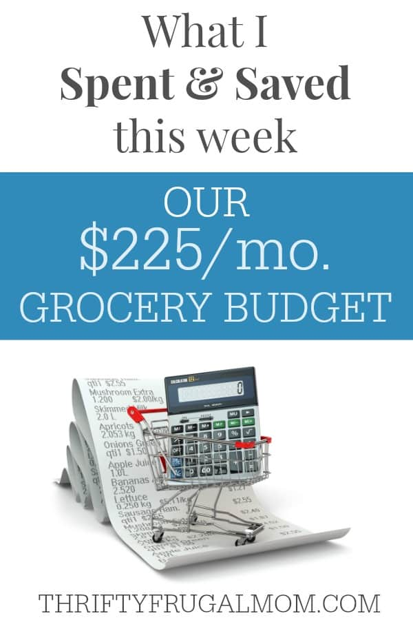 Frugal Living- Our $225 Grocery Budget and how I saved grocery shopping