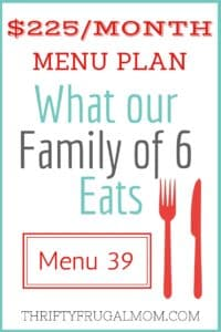 $225/MONTH MENU PLAN FOR OUR FAMILY OF 6 (POST #39)
