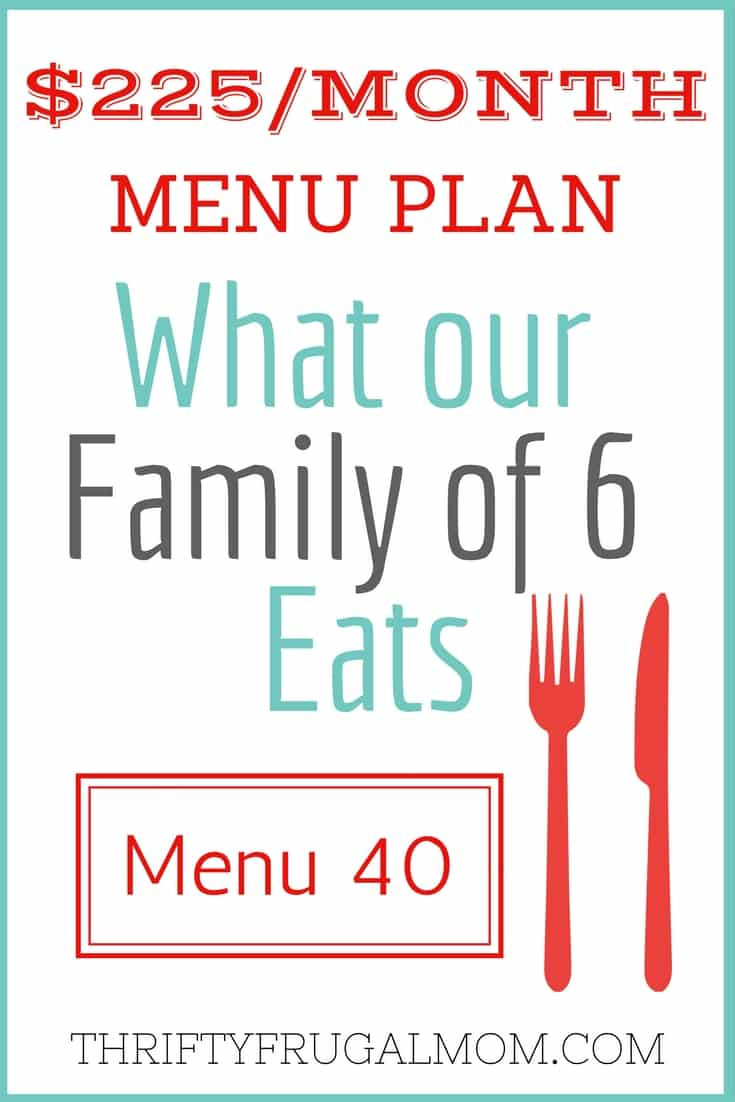 Get inspired with this menu plan that includes lots of frugal meals for families.  Perfect for anyone looking for easy, inexpensive meal ideas!