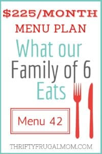 $225/MONTH MENU PLAN FOR OUR FAMILY OF 6 (POST #42)