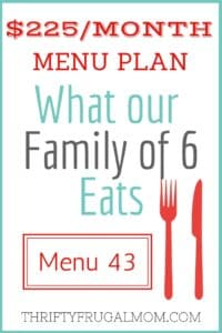 $225/MONTH MENU PLAN FOR OUR FAMILY OF 6 (POST #43)