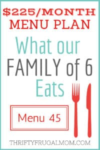 $225/MONTH MENU PLAN FOR OUR FAMILY OF 6 (POST #45)