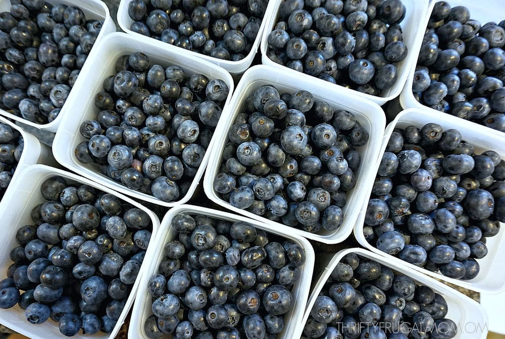 blueberries in freezer boxes