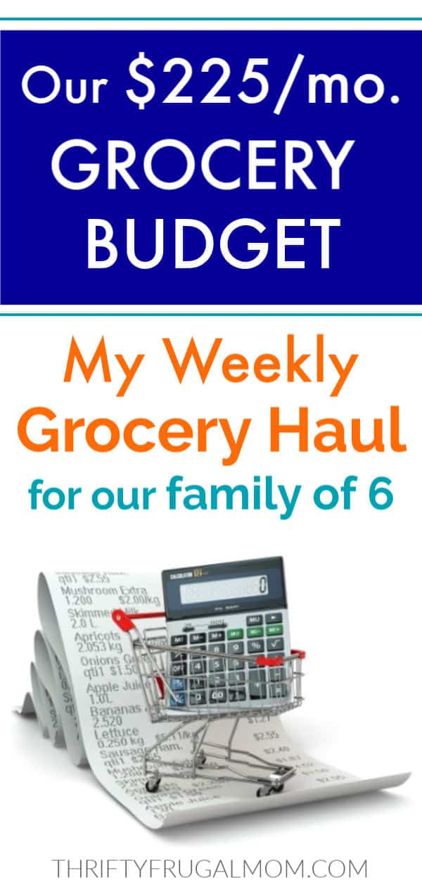 Weekly grocery haul family of six
