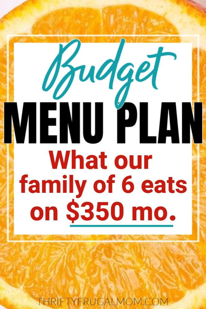 budget menu plan for family of six