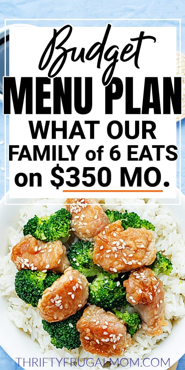 Frugal Budget Menu Plan