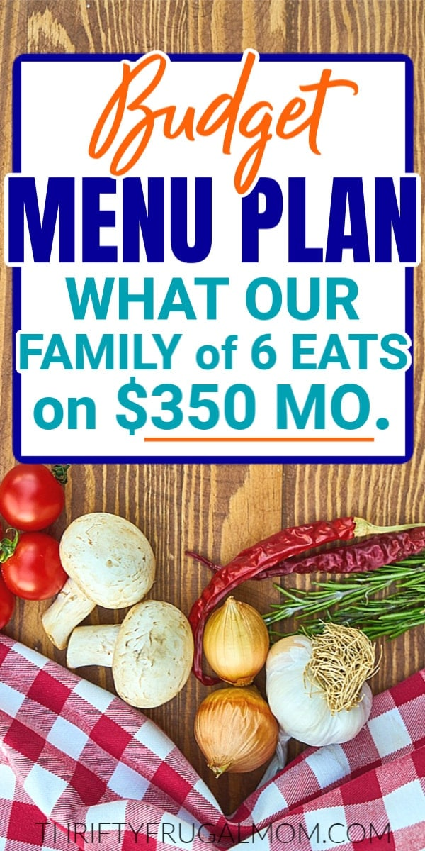 vegetables on table with cheap menu plan text