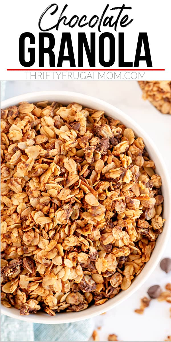 chocolate granola in a white bowl